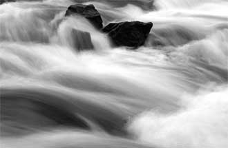 Truckee River Fund Committee and Meetings